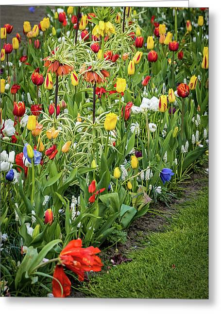 Keukenhof Garden - Netherlands Greeting Card by Jon Berghoff