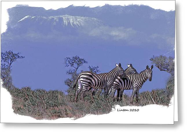Zebras Greeting Cards - Kilimanjaro Greeting Card by Larry Linton