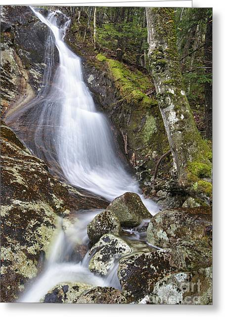 Peaceful Scene Greeting Cards - Waternomee Brook Cascades - Kinsman Notch New Hampshire Greeting Card by Erin Paul Donovan