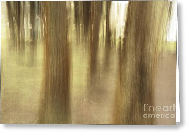 Nature Abstract Greeting Card by Gaspar Avila