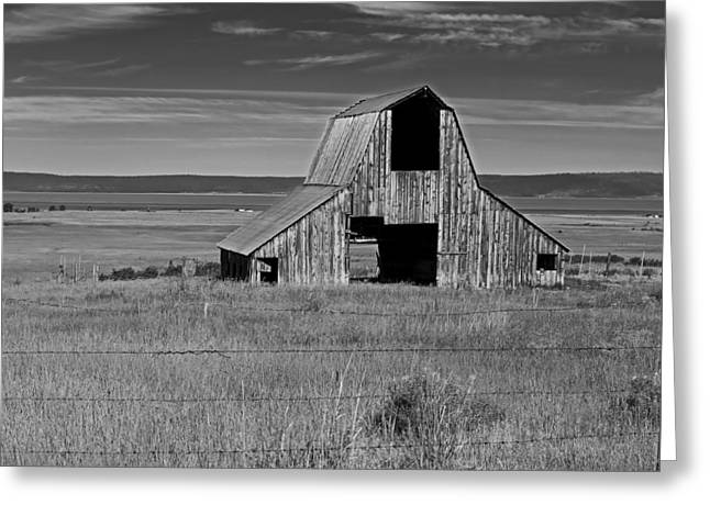 Tin Roof Greeting Cards - Old Barns Of California Greeting Card by Mountain Dreams
