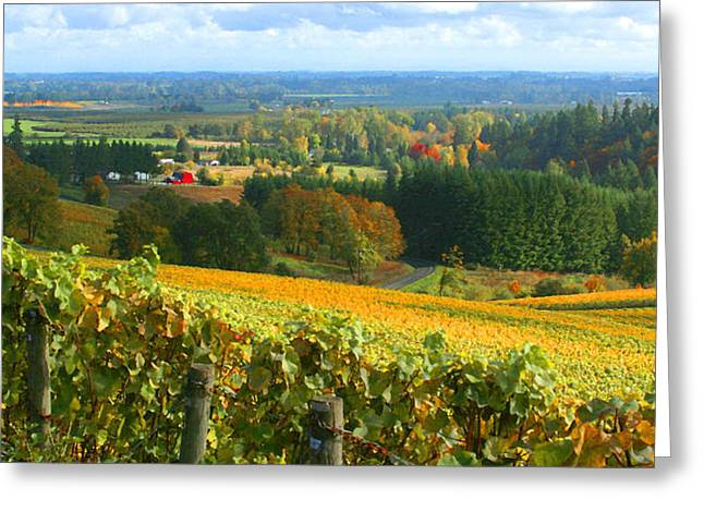 Willamette Greeting Cards - Oregon Wine Country Greeting Card by Margaret Hood