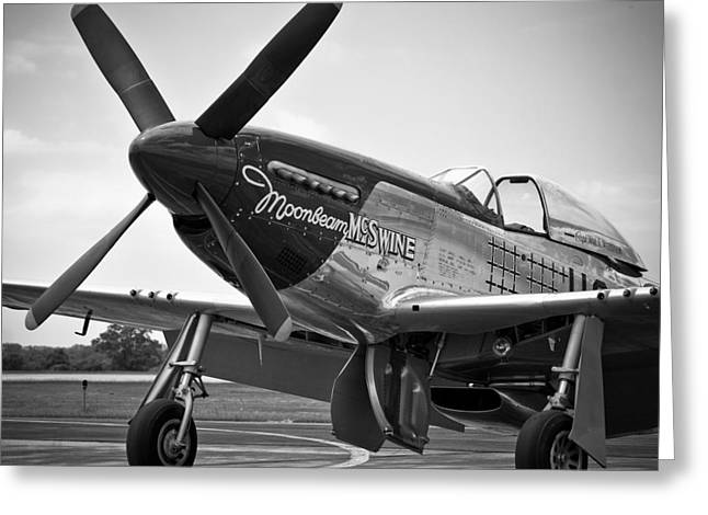 P 51 Mustang Greeting Card by Eric Miller