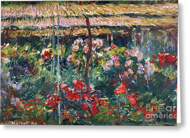 Vintage Painter Greeting Cards - Peony Garden Greeting Card by Claude Monet