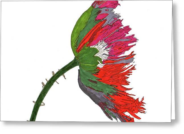 Pin Ink Water Color Greeting Card by Jay Pumphrey Jr
