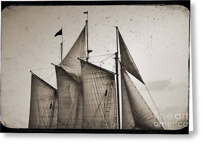 Pirate Ship Digital Greeting Cards - Schooner Pride Tall Ship Charleston SC Greeting Card by Dustin K Ryan