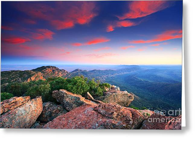 St Mary Peak Sunrise Greeting Card by Bill  Robinson