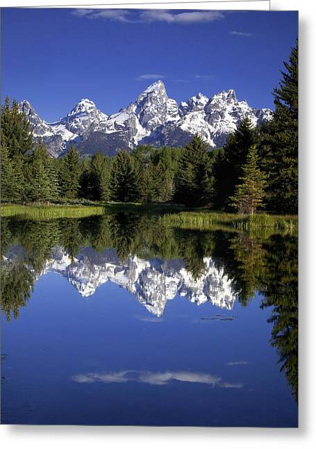 Snow Capped Greeting Cards - Teton Reflections Greeting Card by Andrew Soundarajan