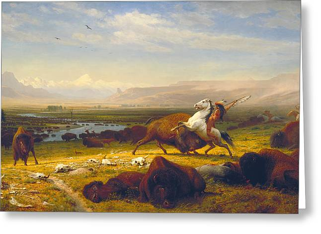 The Great Outdoors Greeting Cards - The Last of the Buffalo Greeting Card by Albert Bierstadt