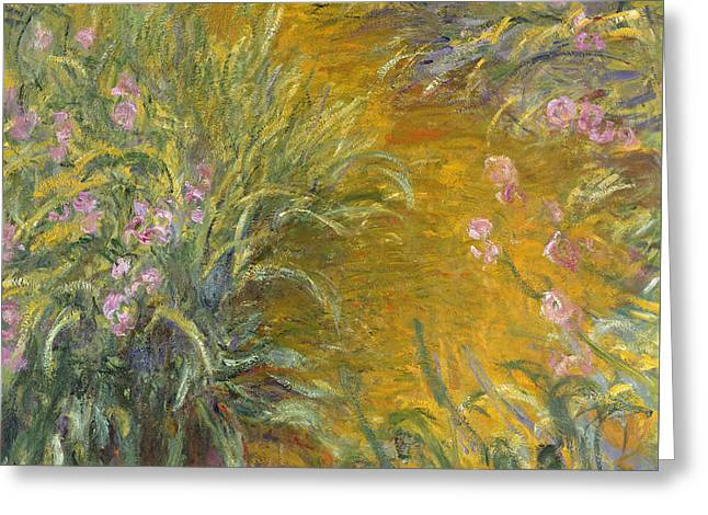 The Path Through The Irises Greeting Card by Claude Monet