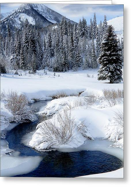 Craggy Greeting Cards - Wasatch Mountains in Winter Greeting Card by Utah Images