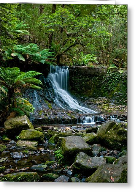 Raining Down Greeting Cards - Waterfall in deep forest Greeting Card by Ulrich Schade