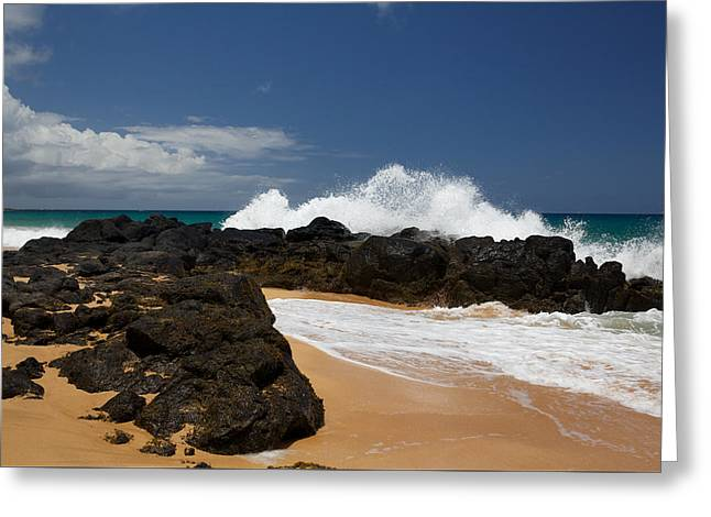 Waimea Falls Greeting Cards - Kauai Shoreline Greeting Card by Steven Lapkin