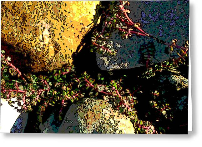 Stone Ground Greeting Cards - Nature Series Greeting Card by Ginger Geftakys