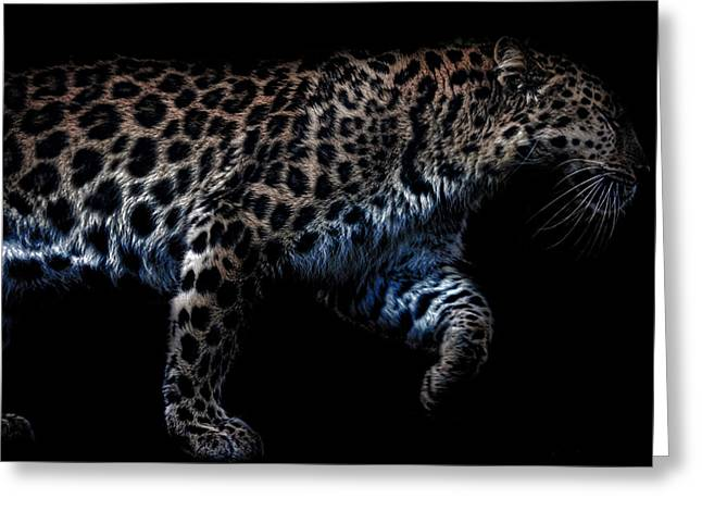 Violent Greeting Cards - Amur Leopard Greeting Card by Martin Newman