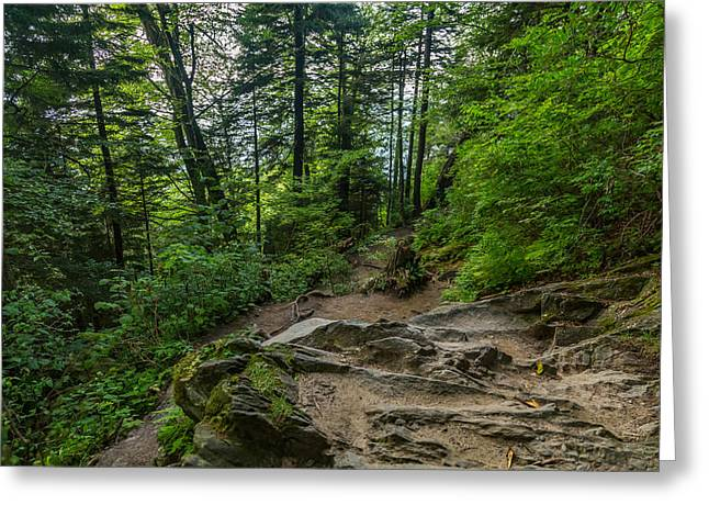 Mccoy Greeting Cards - Appalachian Trail Greeting Card by A Different Brian Photography