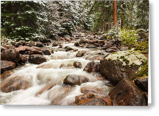 Snow Tree Prints Greeting Cards - Autumn At Gore Creek - Vail Colorado Greeting Card by Brian Harig
