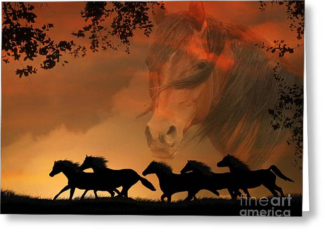 Wild Horses Greeting Cards - 4-ever Free Greeting Card by Stephanie Laird
