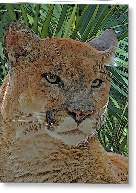 Florida Panther Greeting Card by Larry Linton