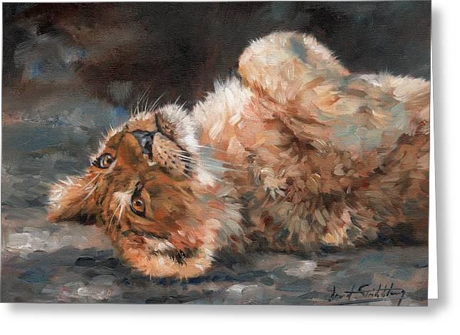 Lion Cub Greeting Card by David Stribbling