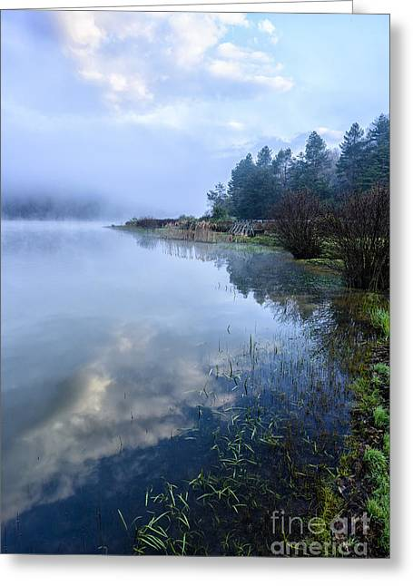 Webster Springs Greeting Cards - Misty Spring Morning  Greeting Card by Thomas R Fletcher