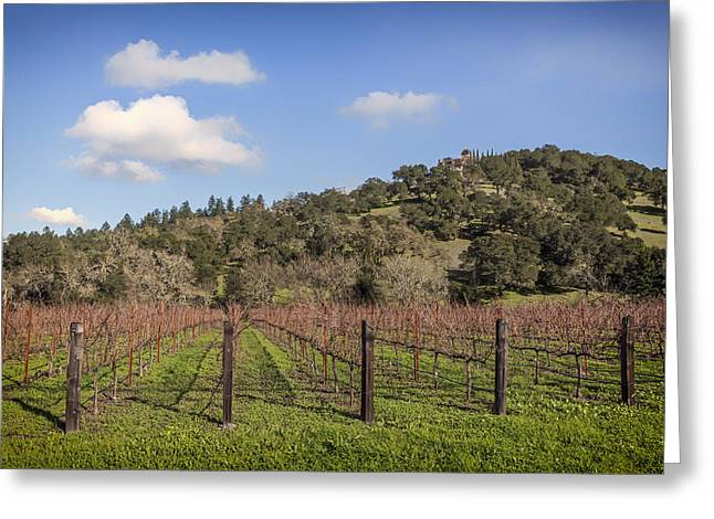 California Vineyard Greeting Cards - Napa Valley Vineyard Greeting Card by Mountain Dreams