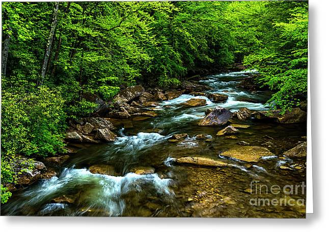 North Fork Cherry River Greeting Card by Thomas R Fletcher