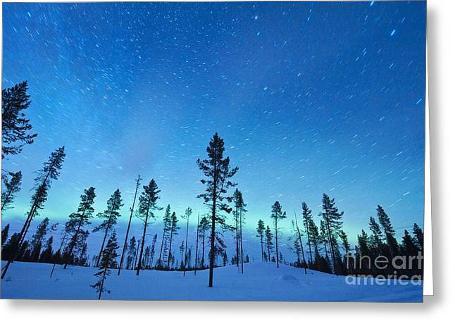 Snowy Night Night Greeting Cards - Northern Lights Greeting Card by Jeremy Walker