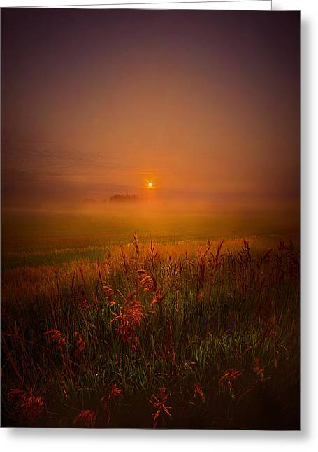 Fog Mist Greeting Cards - Peace Of Mind Greeting Card by Phil Koch