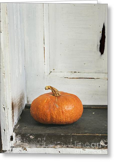 Pyrography Greeting Cards - Pumpkin Greeting Card by Jelena Jovanovic