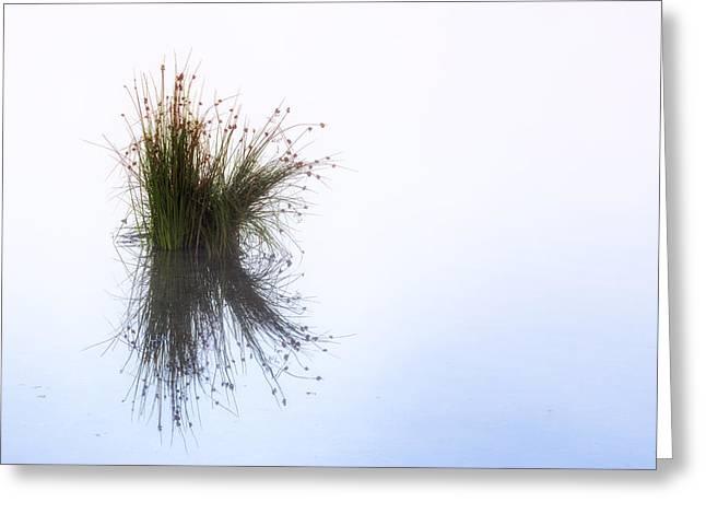 Abstract Minimalism Greeting Cards - Reflection Greeting Card by Joana Kruse
