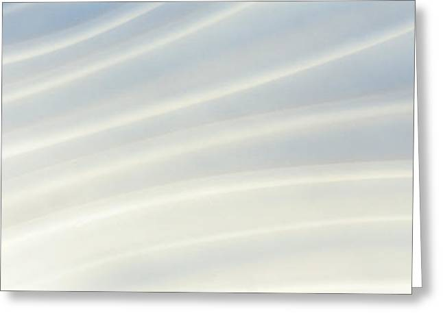 Subtle Colors Greeting Cards - Satin Greeting Card by Panoramic Images