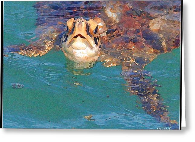 Kemp Greeting Cards - Sea Turtle  Greeting Card by W Gilroy