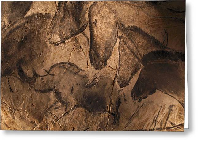 Palaeolithic Greeting Cards - Stone-age Cave Paintings, Chauvet, France Greeting Card by Javier Truebamsf
