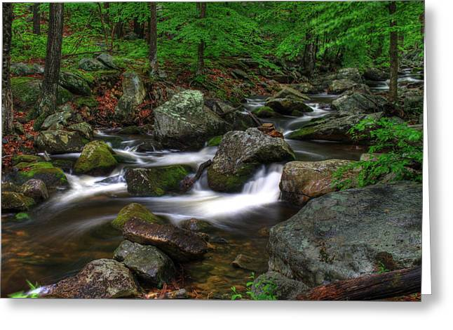 Water Flowing Greeting Cards - Tiorati Brook- Harriman State Park New York Greeting Card by Gary Nedbal