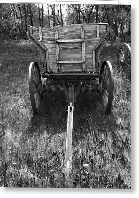 D.w. Greeting Cards - Vintage Farm Wagon on Grass with Wild Flowers Greeting Card by Donald  Erickson
