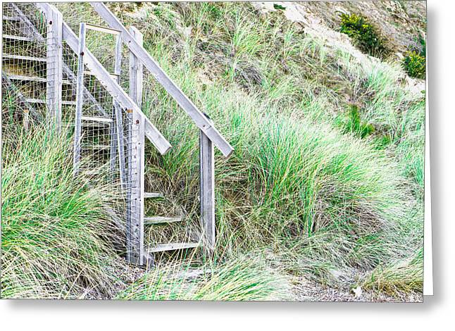 Empty Pool Greeting Cards - Wooden steps Greeting Card by Tom Gowanlock