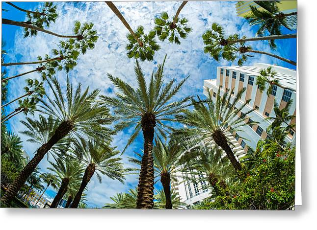 Recently Sold -  - Scenic Drive Greeting Cards - Miami Beach Greeting Card by Raul Rodriguez