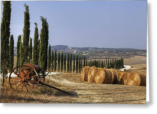 D Greeting Cards - Tuscany Greeting Card by Joana Kruse