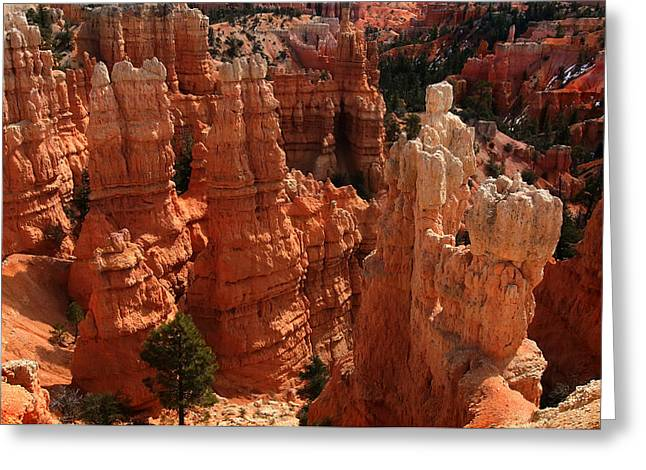 Grand Circle Greeting Cards - Bryce Canyon National park Greeting Card by Mark Smith