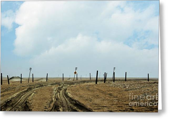 Mud Season Greeting Cards - 4x4 Trail Greeting Card by Tom Gari Gallery-Three-Photography