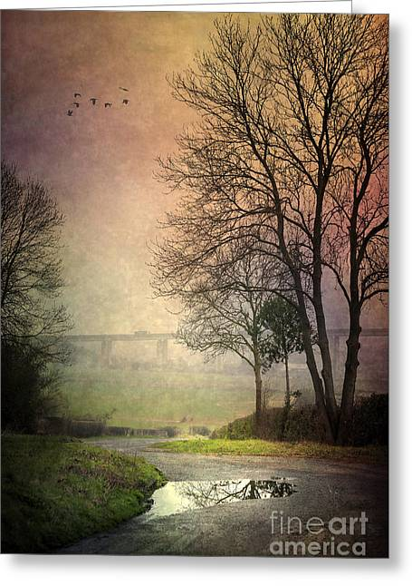 Flower Design Greeting Cards - After Rain Greeting Card by Svetlana Sewell