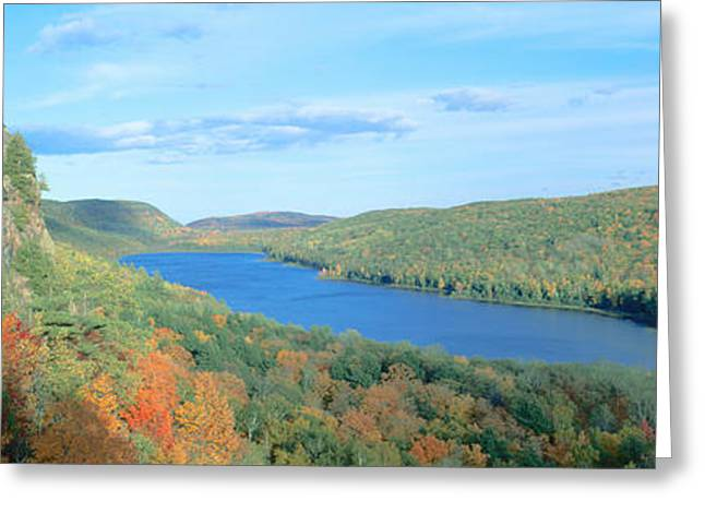 Fall Colors Greeting Cards - Autumn Color At Porcupine State Park Greeting Card by Panoramic Images