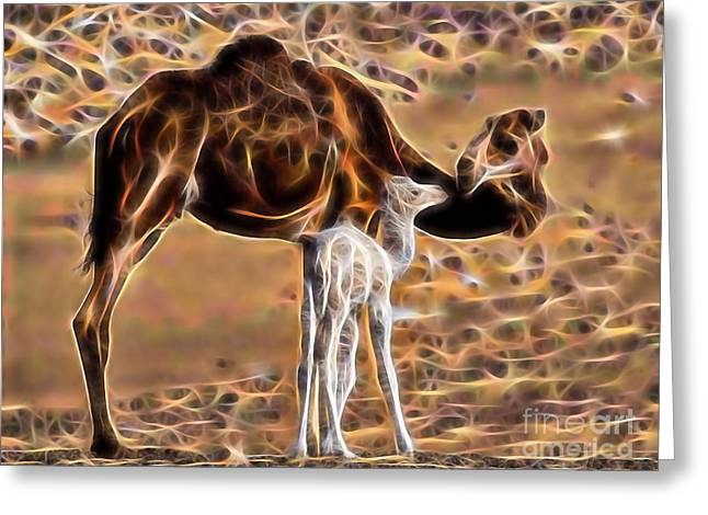 Camel Greeting Cards - Camel Collection Greeting Card by Marvin Blaine