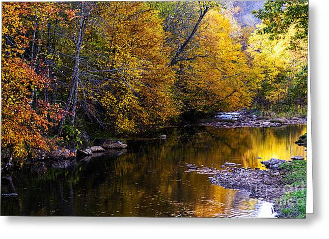West Fork Greeting Cards - Fall Color Gauley River Headwaters Greeting Card by Thomas R Fletcher