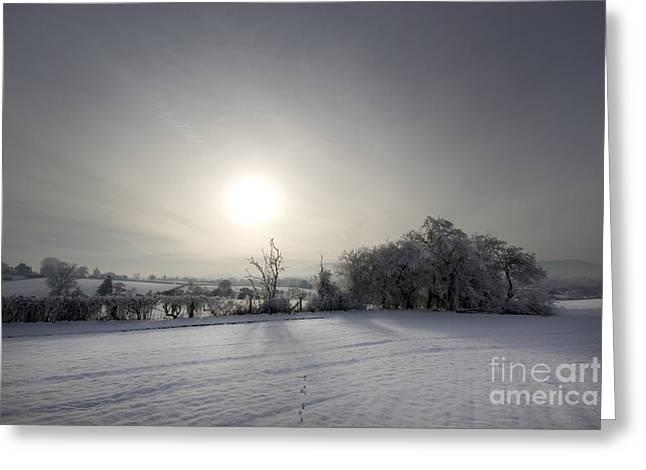 Foggy Day Greeting Cards - Frozen Britain Greeting Card by Angel  Tarantella