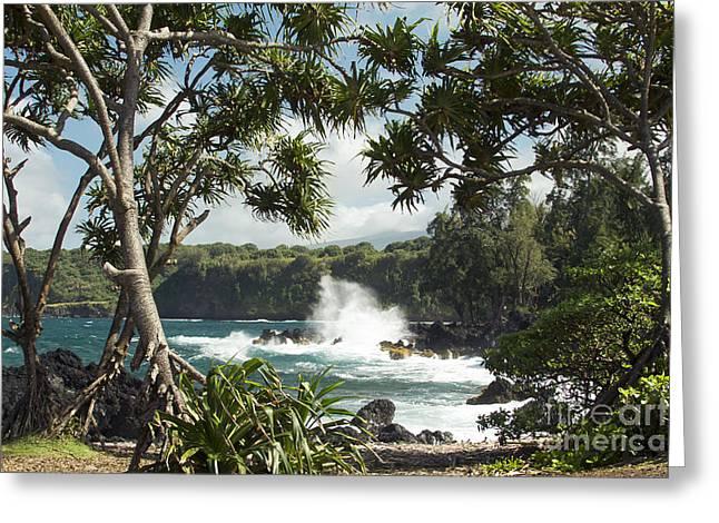 Photographers East Point Greeting Cards - Keanae Maui Hawaii Greeting Card by Sharon Mau