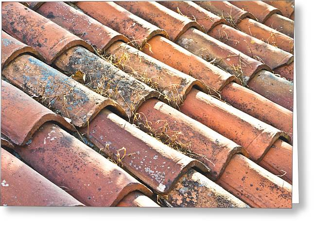 Red Tile Roof Greeting Cards - Roof tiles Greeting Card by Tom Gowanlock