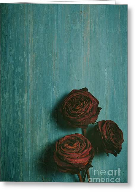 Reds Pyrography Greeting Cards - Roses Greeting Card by Jelena Jovanovic