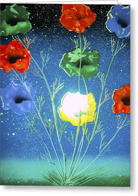 Modern Online Marketing Greeting Cards - Untitled Greeting Card by Artista Elisabet